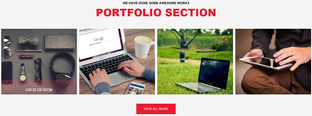 portfolio section
